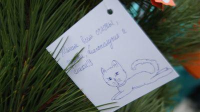 Символ Одессы стал деревом желаний (ФОТО), фото-3