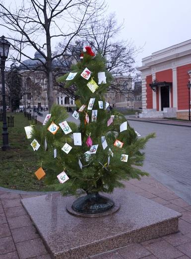 Символ Одессы стал деревом желаний (ФОТО), фото-1