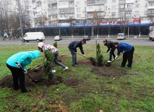 В Одессе на Черемушках браконьеры уничтожили посадку сосен, фото-5