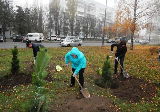 В Одессе на Черемушках браконьеры уничтожили посадку сосен, фото-3