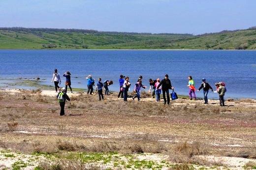 Натуралисты на берегу