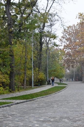 DSC_3377 Из одесских парков после уборки вывезли 200 тонн мусора