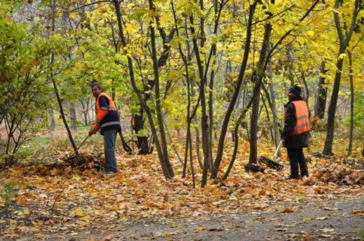 DSC_3383 Из одесских парков после уборки вывезли 200 тонн мусора