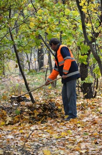DSC_3384 Из одесских парков после уборки вывезли 200 тонн мусора