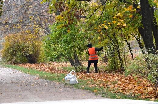 DSC_3461 Из одесских парков после уборки вывезли 200 тонн мусора