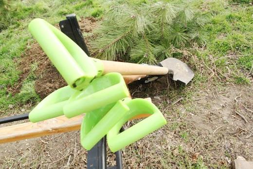 7 В Одессе на приморском склоне высадили сосновый бор