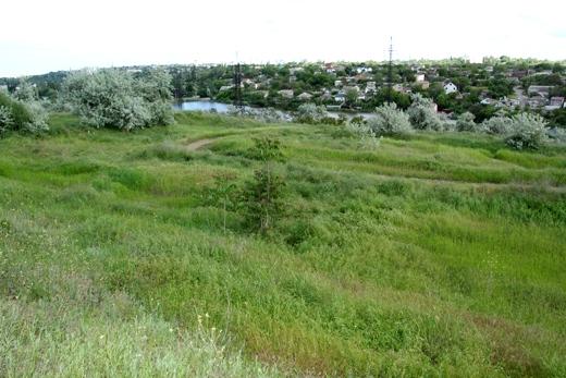 1 В депрессивном районе Одессы Труханов хочет проводить Олимпийские игры