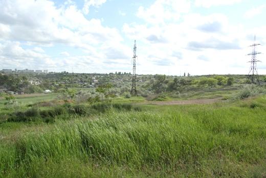 5 В депрессивном районе Одессы Труханов хочет проводить Олимпийские игры