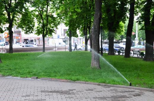 DSC_7495 В центре Одессы газон будет сам себя поливать