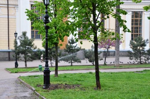 DSC_7518 В Одессе Соборную площадь оборудовали системой автополива