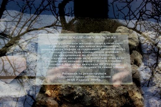 IMG_5472 Вандалы в Одессе снова уничтожили аллею лип в Лунном парке