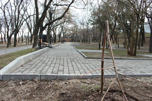 IMG_5488 Вандалы в Одессе снова уничтожили аллею лип в Лунном парке
