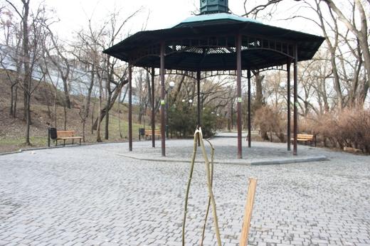 IMG_5493 Вандалы в Одессе снова уничтожили аллею лип в Лунном парке
