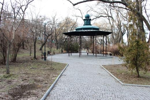 IMG_5494 Вандалы в Одессе снова уничтожили аллею лип в Лунном парке