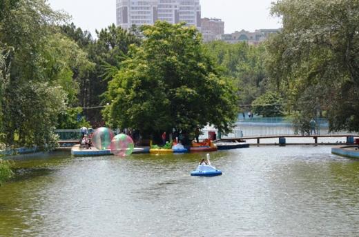 DSC_0083 Со дна пруда в одесском парке Победы подняли тонны мусора и ила