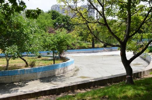 DSC_0085 Со дна пруда в одесском парке Победы подняли тонны мусора и ила