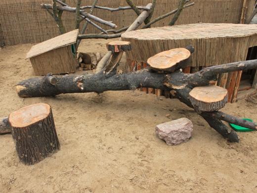 IMG_3993 Одесская мэрия отрекламировала частный зоопарк