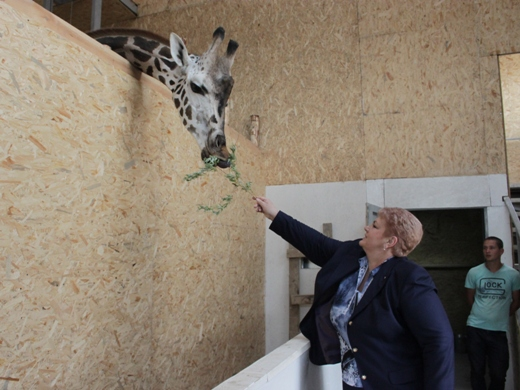 IMG_4021 Одесская мэрия отрекламировала частный зоопарк