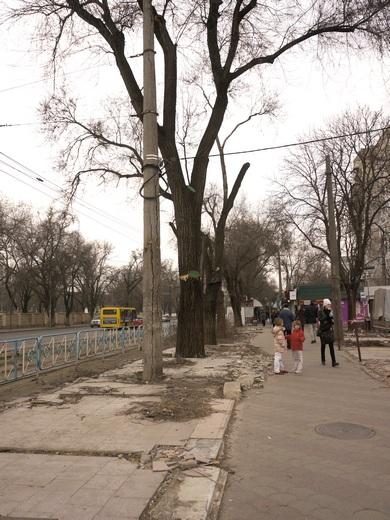 15 В Одессе перерыли Большой Фонтан