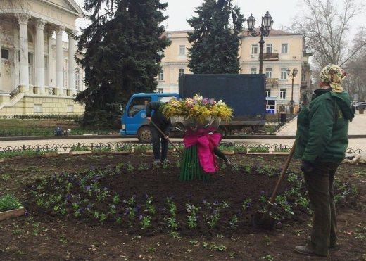 1%20%282%29 К 8 марта в Одессе подготовили несколько цветочных композиций на клумбах