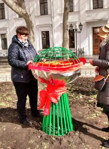 3 Под окнами Труханова появился огромный букет