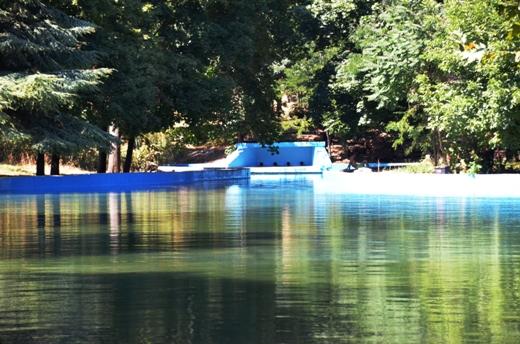 В одесском дендропарке восстановили второй по счету пруд (ФОТО), фото-1