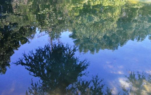 В одесском дендропарке восстановили второй по счету пруд (ФОТО), фото-6