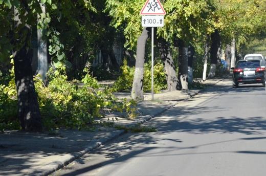 1 В Одессе продолжают ликвидировать последствия стихии