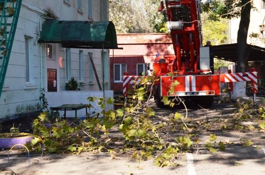 12 В Одессе продолжают ликвидировать последствия стихии