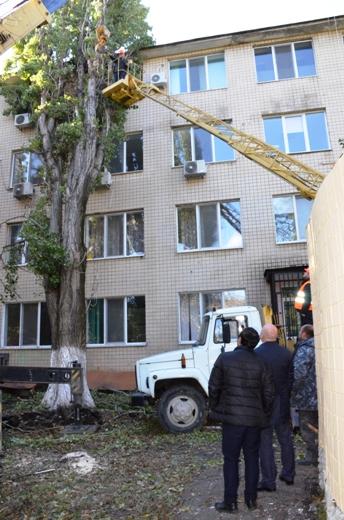 24 В Одессе продолжают ликвидировать последствия стихии