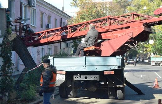 32 В Одессе продолжают ликвидировать последствия стихии