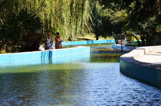 DSC_2023 В одесском дендропарке высушат последний пруд