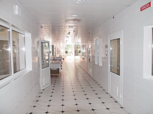 Государственная стоматологическая поликлиника в махачкале на шамиля