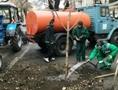 Еще 38 деревьев высадили в исторической части Одессы