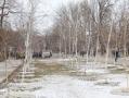 В Одессе благоустроят Прохоровский сквер