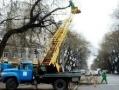 В связи с работами по обрезке деревьев затруднено движение транспорта по ул. Степовой