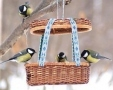 Odessa Zoo invites to take part in the action «Make a bird feeder!»