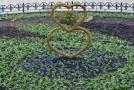 Клумбу возле одесской мэрии украсила декоративная композиция «Три сердца»