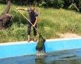 Продолжаются работы по очистке прудов в дендропарке Победы в Одессе. Фото