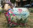 В центре Одессы побывали необычные овечки. Фото