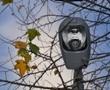 Вдоль аллей парка Победы поэтапно подключают новое освещение. Фото