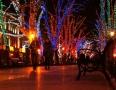 172 дерева на Приморском бульваре Одессы заново украшены разноцветной подсветкой. Фоторепортаж