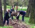 84 дерева и 70 кустов высадил одесский «Горзелентрест» в ходе субботника