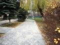 В Одессе проводят благоустройство территорий детсадов и школ. Фото