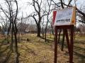 В парке Шевченко строят площадку для занятий экстремальными видами спорта