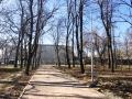 В Одессе продолжают работы по капремонту Преображенского парка. Фото