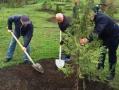 В одесском парке Победы высадили 147 деревьев. Фото