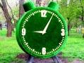 Цветущие будильник и книга появились в одесском парке Горького. Фото