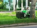 Горзелентрест продолжает работы по омоложению деревьев Одессы. Фото