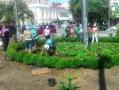 На Тираспольской площади высаживают цветы